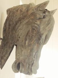 Zinken hoofd paard