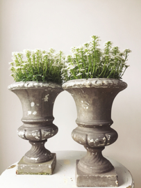 Set of two identical versaille vases