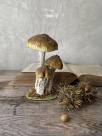 Papier maché paddenstoelen