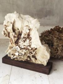 Groot koraal ornament op voet
