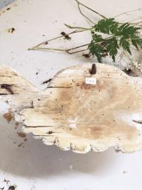 Antiek houten putti