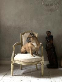 Antique Louis XVI chair