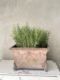 Unique antique sinc jardiniere