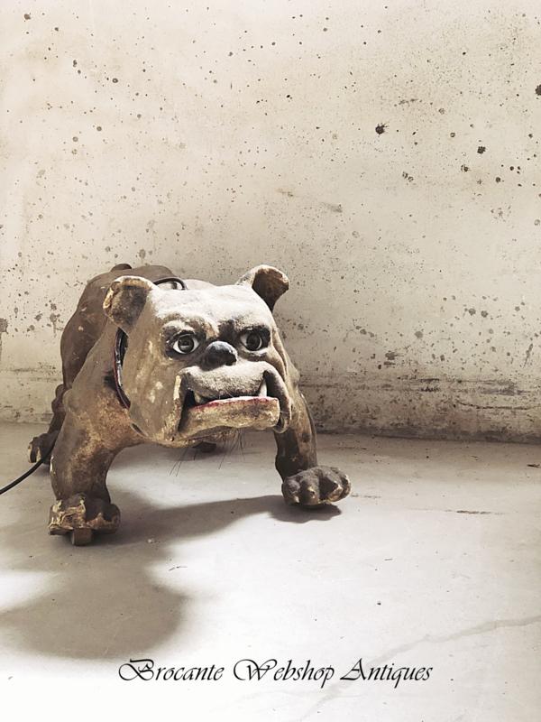 Unique late Victorian Bulldog   about 1890