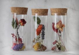 droogbloemen in buisje 10 cm