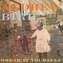 Andrew Bird - Break It Yourseld 2LP