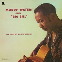Waters, Muddy Sings Big Bill Broonzy LP