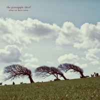 Pineapple Thief What We Have Sown 2LP