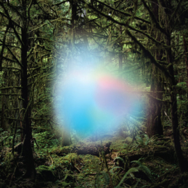 Trey Anastasio - Ghosts of the Forrest 2LP