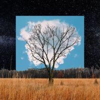 Fink Bloom Innocent LP - White Vinyl-