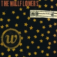 Wallflowers The Bringing Down The Horse 2LP