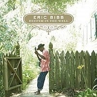 Erib Bibb - Deeper In The Well LP