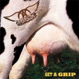 Aerosmith Get A Grip 180g 2LP