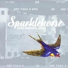 Sparklehorse - Good Moring Spider LP