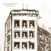 Pineapple Thief 10 Stories Down LP -hq-