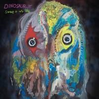 Dinosaur Jr. Sweep It Into Space LP