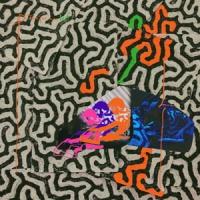 Animal Collective Tangerine Reef -ltd- LP