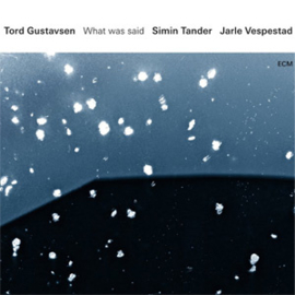 Tord Gustavsen, Simin Tander & Jarle Vespestad What Was Said 180g 2LP