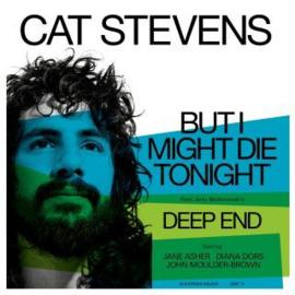 Cat Stevens But I Might Die Tonight 12