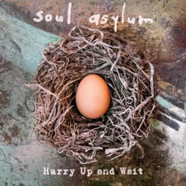 SOUL ASYLUM Hurry Up And Wait 2LP (Deluxe Version)