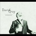 David Gray - The Foundling LP
