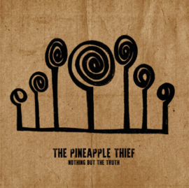 The Pineapple Thief Nothing But The Truth Blu-Ray