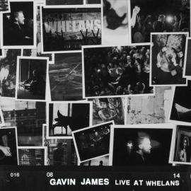 Gavin Jams - Live At Whelans LP -Transparant-