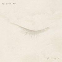 Neil & Liam Finn  Lightsleeper LP