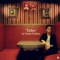 Jamie Cullum Taller LP