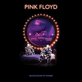 Pink Floyd Delicate Sound Of Thunder 180g 3LP