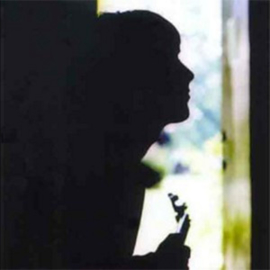 Paul Weller Wild Wood 180g LP
