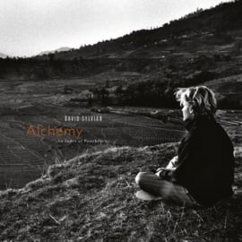David Sylvian Alchemy / An Index Of Possibilities LP