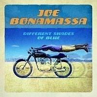Joe Bonamassa - Different Shades Of Blues LP -Picture Disc-