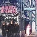 Ariel Pink`s Haunted Graffiti - Before Today LP