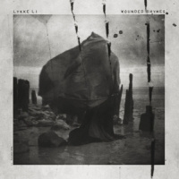 Lykke Li Wounded Rhymes 2LP - Anniversary Edition-