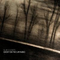 Slaid Cleaves Ghost On The Radio LP
