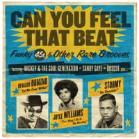 Various Can You Feel That Beat: Funk 45's 2LP