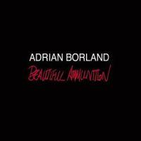 Adrian Borland Beautiful Ammunition 2LP
