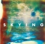Horrors - Skying LP