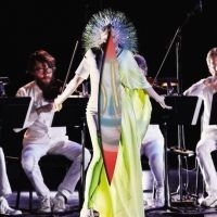 Bjork Vulnicura Strings 2LP