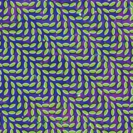 Animal Collective Merriweather Post Pavillion 2LP