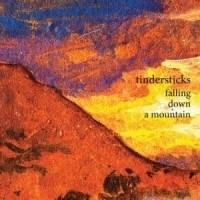 Tindersticks - Falling Down The Mountain LP