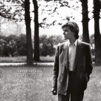 David Sylvian Brilliant Trees LP