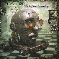Gov `t Mule - Life Before Insanity LP