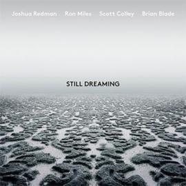 Joshua Redman Still Dreaming LP