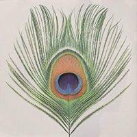 Xtc Apple Venus Volume 1 LP