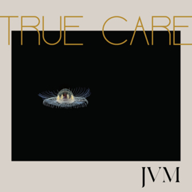 James Vincent Mcmorrow True care 2LP