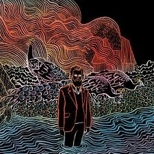 Iron & Wine - Kiss Each Other Clean LP