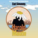 Songs From Harold Maude By Yusuf/Cat Stevens (Yellow Vinyl) LP