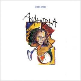 Miles Davis Amandla 180g LP
